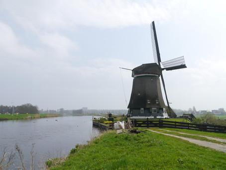 """""""זו טחנת הרוח שלנו"""". ילדות בפולדר ההולנדי"""