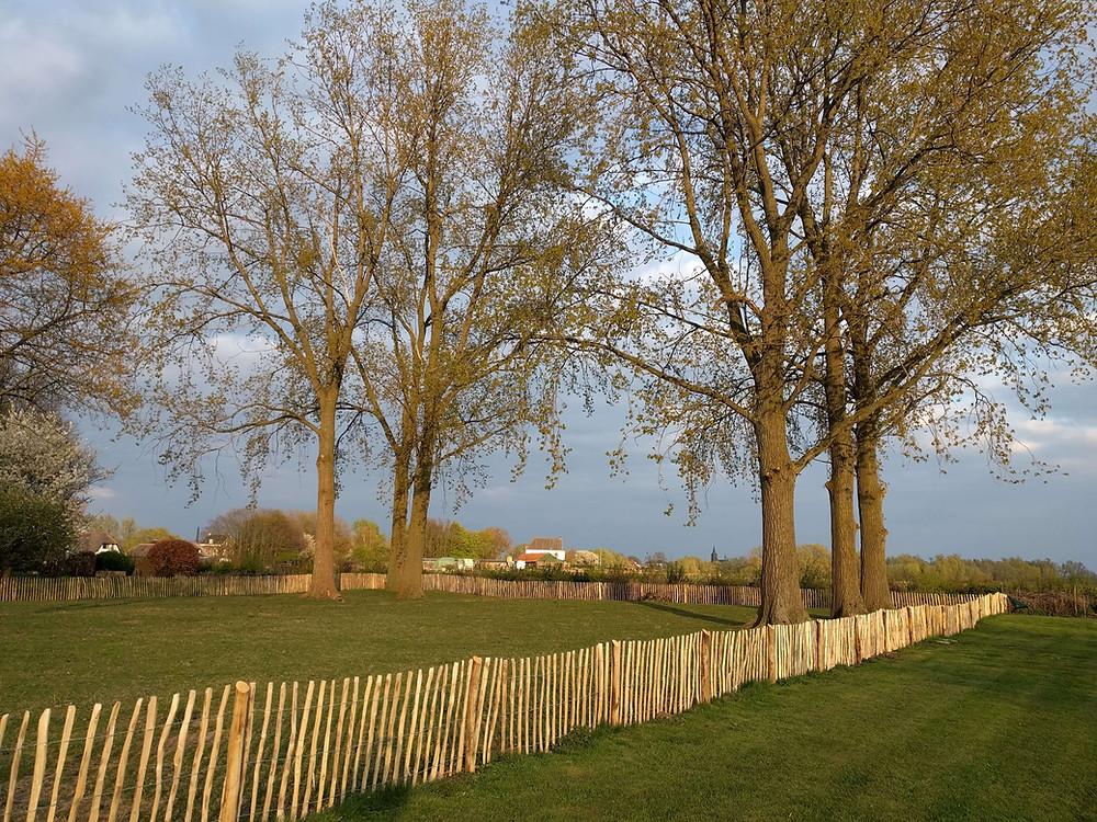 נוף כפרי של שדות ליד נימכן