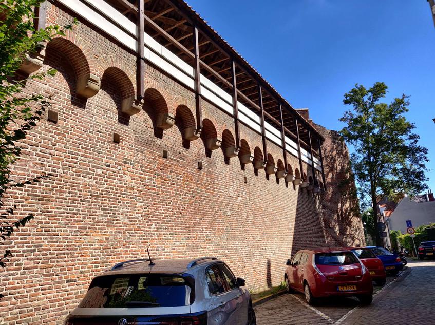 שרידי חומת העיר