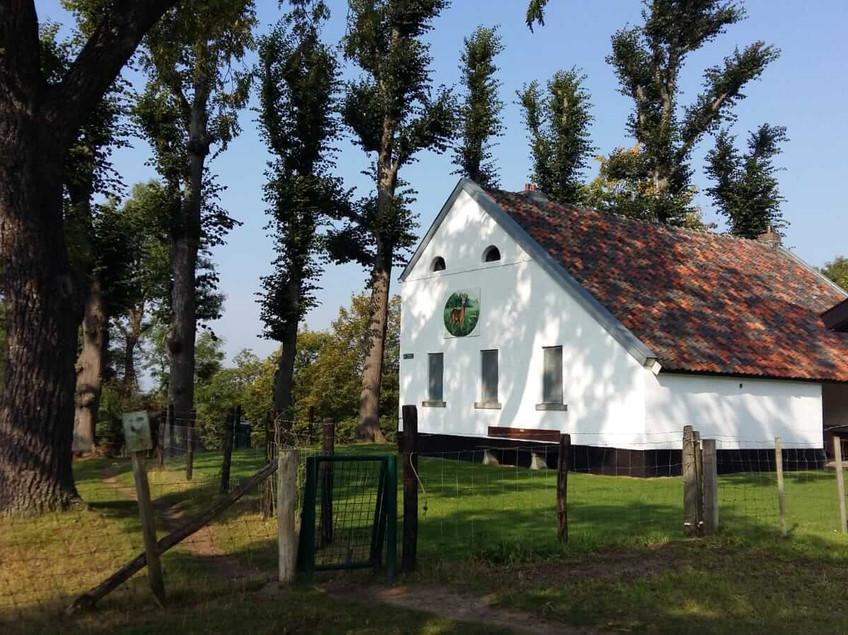 בית שומר היער