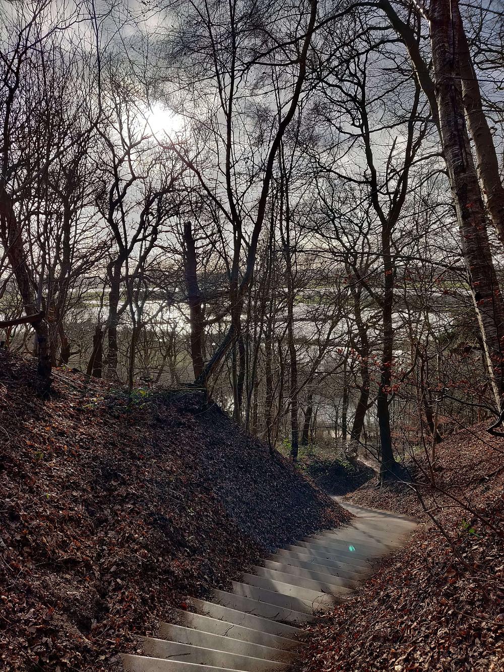 גרם מדרגות תלול היורד לכיוון הנהר