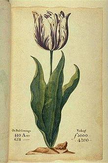 ציור מספר משנת 1637