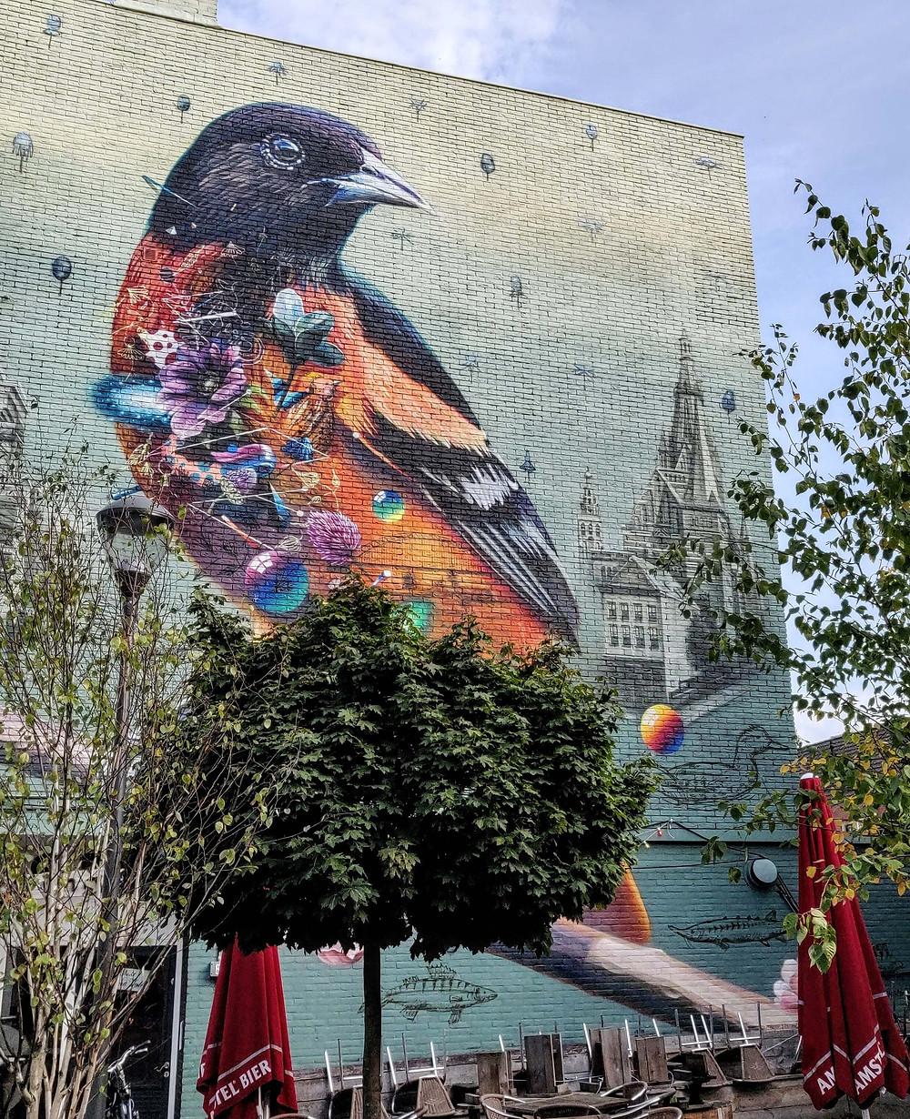 ציור קיר של ציפור צבעונית