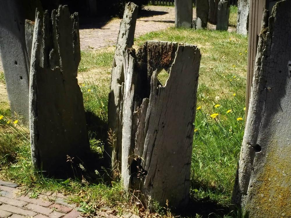 גדר סביב הבית העשויה עצמות לוויתנים