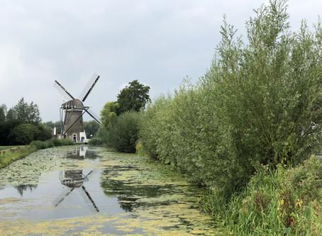 שייט בחצר האחורית של הולנד עם משפחת גנון