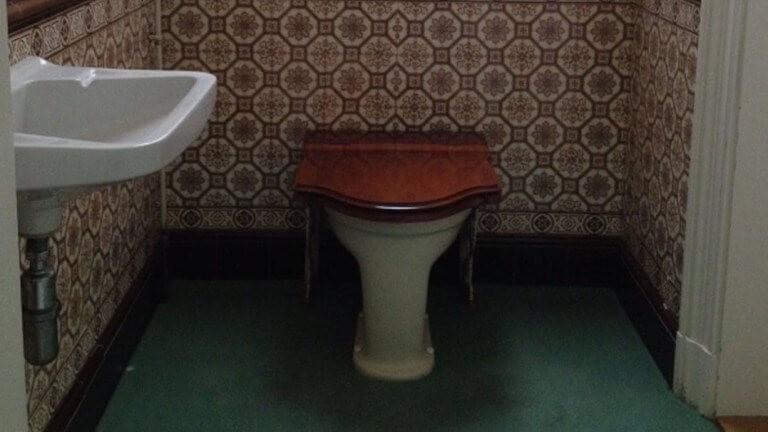 חדר השירותים הצנוע בארמון המלכותי בהולנד