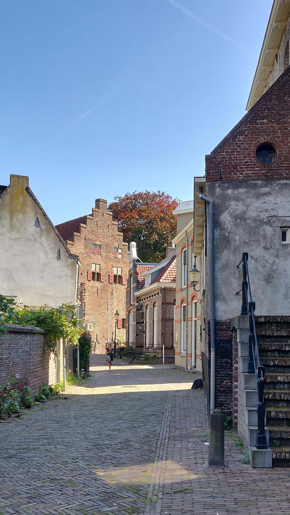 רחוב בתי החומה