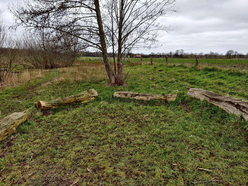 פינת ישיבה מקורות עץ