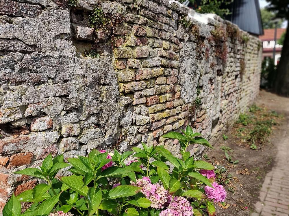 חומה עתיקה עם נישה לנר