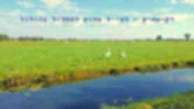 רק-עתיק - לטייל מחוץ למסלול בהולנד.jpg