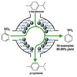 transferhydro.jpg
