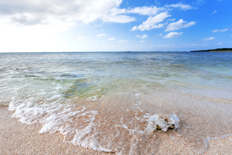 周辺のビーチ