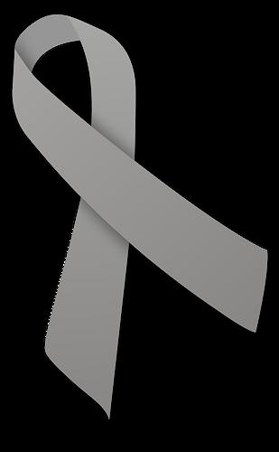 500px-Gray_ribbon.svg.png