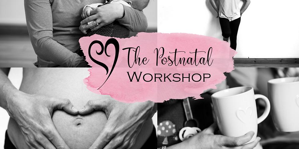 The Postnatal Foundations Workshop