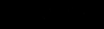 STEINDORF LOGO schwarz transparent.png