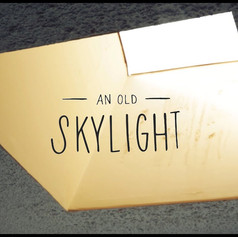 Easy Replacement Skylight Hatch