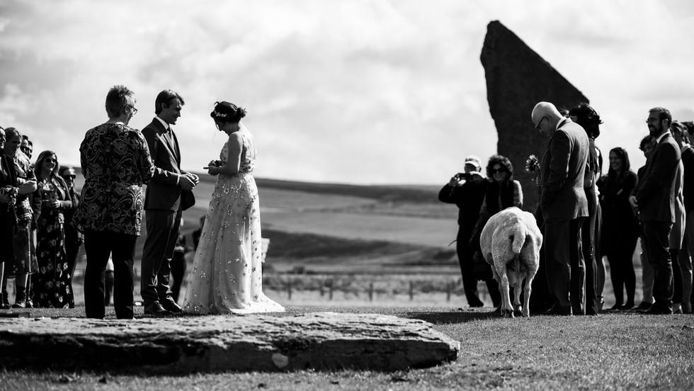 WeddingGrieve-36.jpg