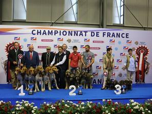 Championnat de France 2017 des chiens de race