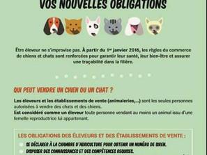 Nouvelles obligations sur la vente des chiens ...
