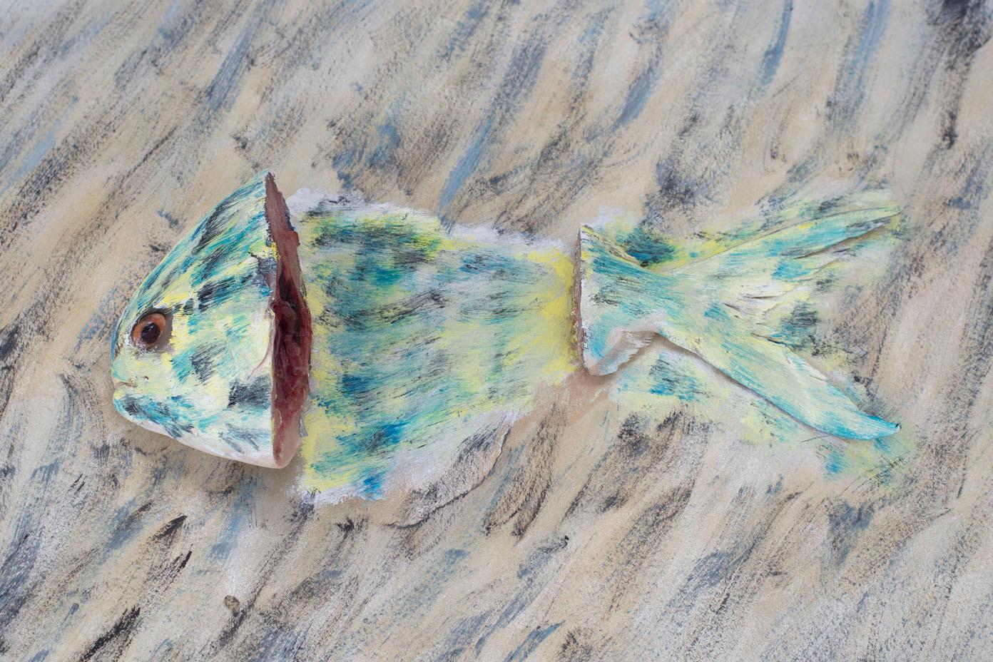 fish-17.jpg