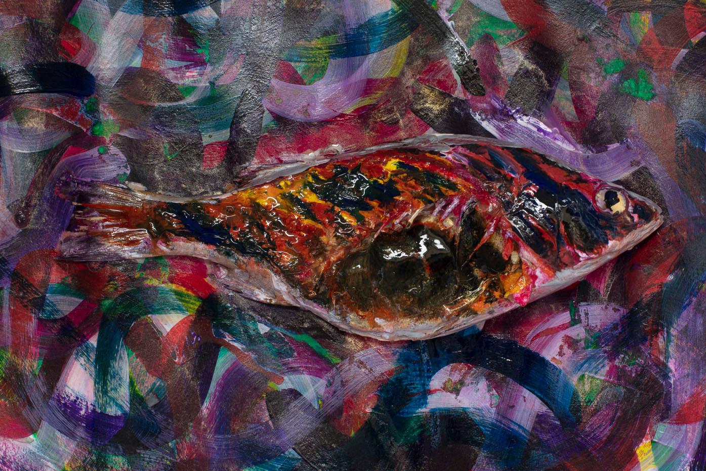 fish-31.jpg
