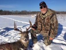 Deer 1 of 2017