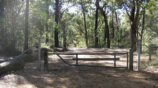 This is the dividing fence between the Woodford and Glenbrook sections of the firetrail.