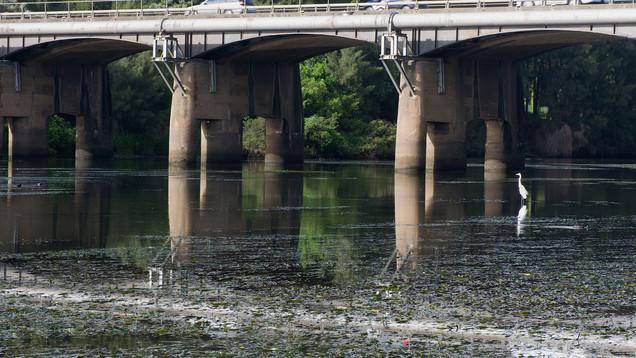 The Richmond Bridge from the wharf in Hana Park.