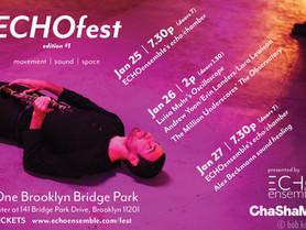 "Solo ""Oscilloscope Study 3.0"" at ECHOfest - January 26, 2pm at One Brooklyn Bridge Park"