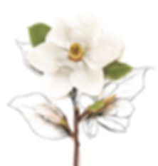 New Logo Flower.png