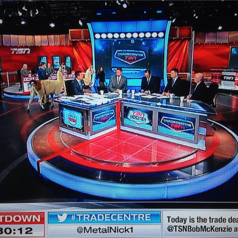 NHL Trade Deadline Makes TV Interesting