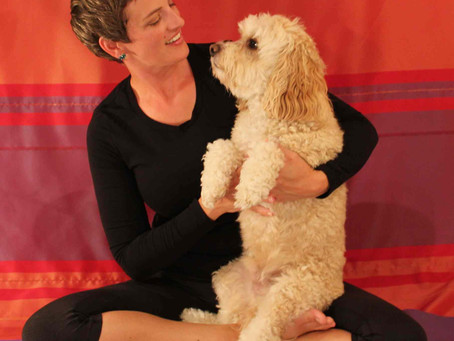 Lanora Lennon: Goat Yoga and Other Variations