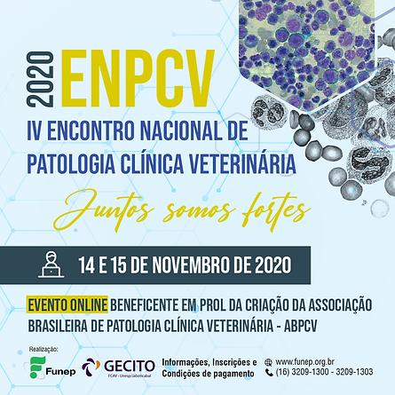 ENPCV 2020 Instagram.png