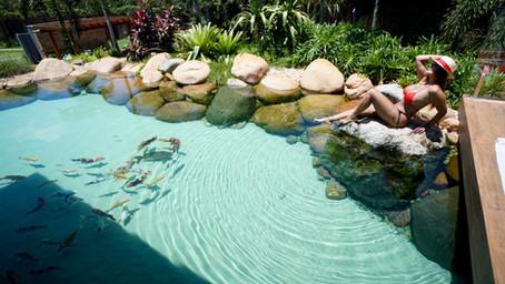 Os benefícios de ter uma piscina natural em sua casa