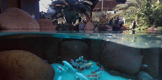 Mergulho piscina natural construida