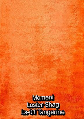 Momeni Luster Shag 01 tangerine.jpg