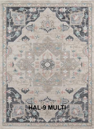 HAL-9 MULTI.png