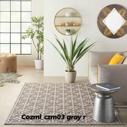 Cozml_czm03 gray r.jpg