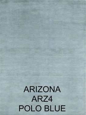 arizona arz4.jpg