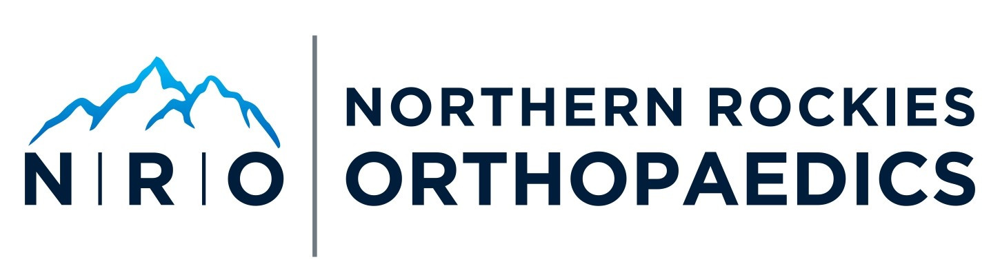 new NRO logo 2018 crop.jpg