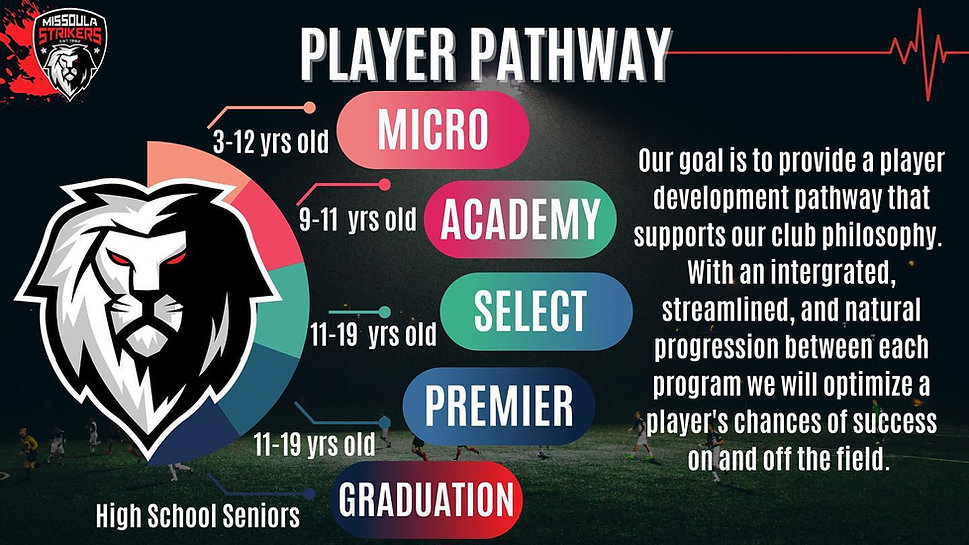 MS Player Pathway.jpg