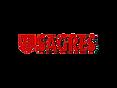 logo-sagres-w.png