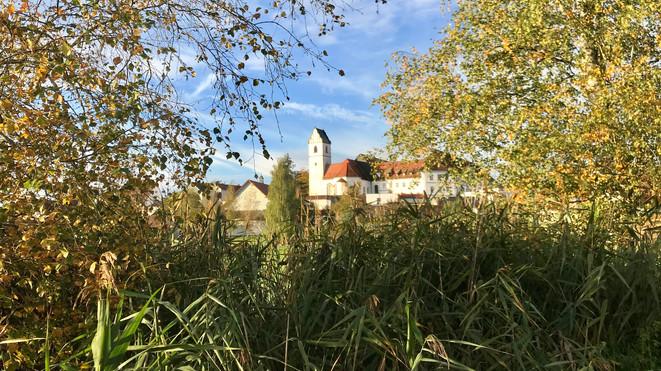 Bad Buchau