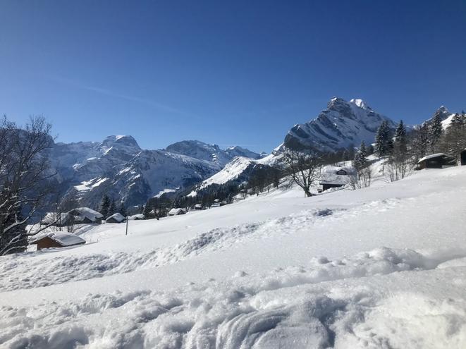Wir geniessen das traumhafte Wetter am Sonntag, den Schnee und die Sicht. Standseilbahn Braunwald - Schwettiberg - Mattwald - Grotzenbüel - Ortstockhaus mit Tee und Torino - Hüttenberg mit Rasthalt - Bräch Unterstafel - Braunwald - Standseilbahn Laufzeit ca. 4,5 Std.