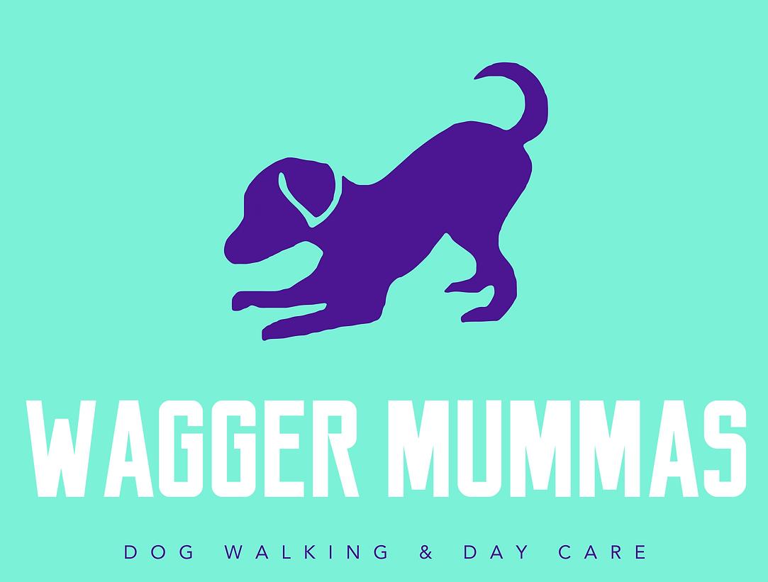 Wagger Mummas, Puppy, Dog, Walking, day Boarding