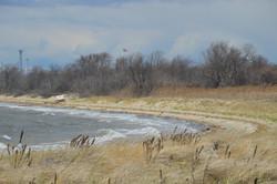 Dead Horse Bay Shore