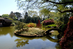Japanese Garden, Brooklyn Botanical