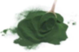 Spirulina-Polvere-Biologica.jpg
