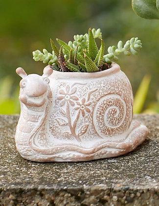 SERRV What's the Hurry Snail Terracotta Planter