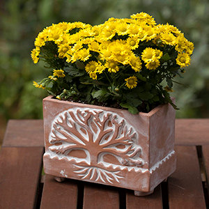 SERRV Tree of Life Planter